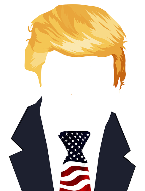 trump in outline